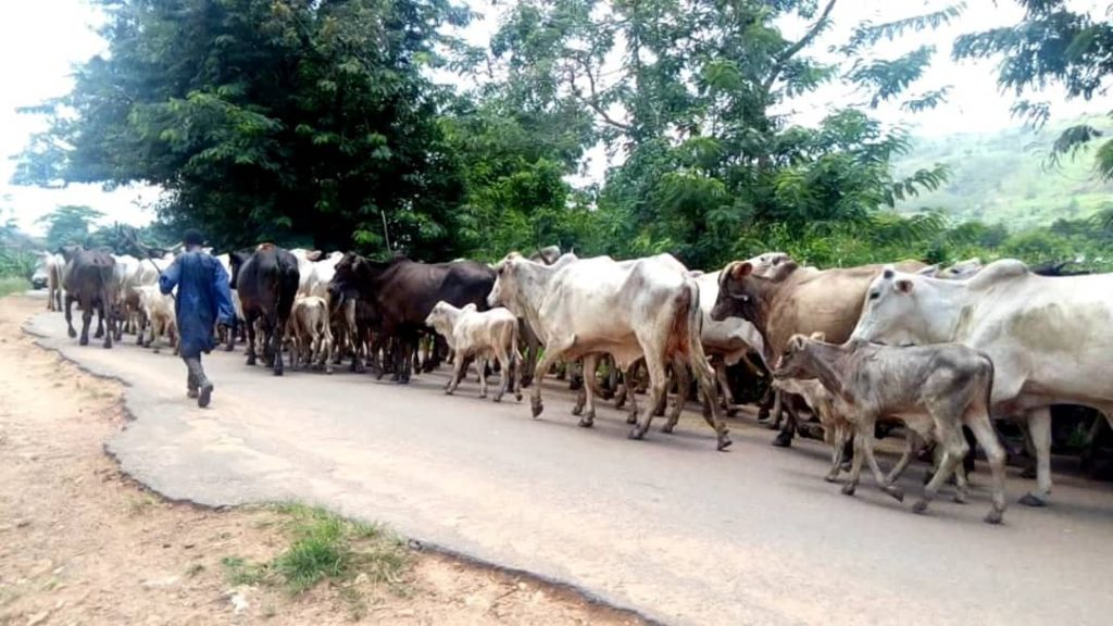 E/R: Armed police storm Huhunya as farmers clash with herders