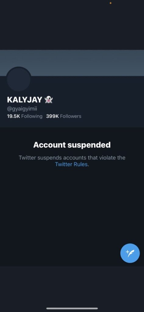 Twitter suspends account of #FIXTHECOUNTRY 'founder' KALYJAY. 49